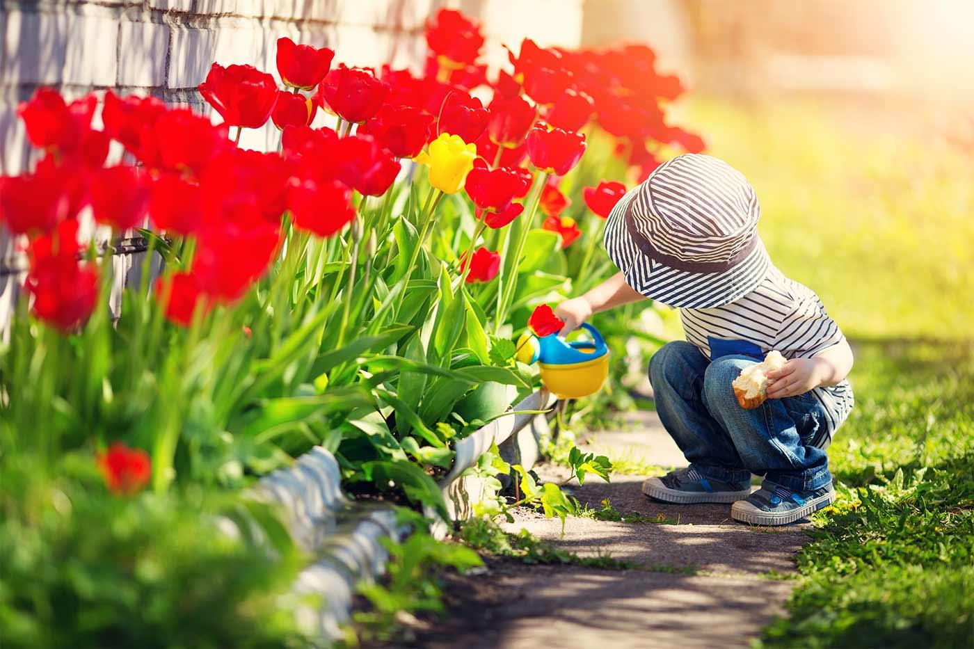 child watering flowers in a garden