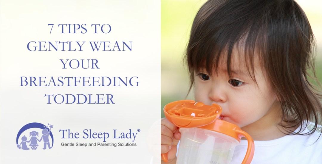 wean your breastfeeding toddler