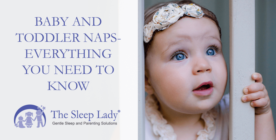 baby and toddler naps
