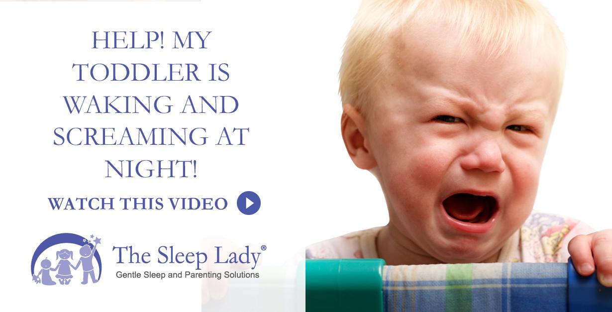 toddler wakes screaming