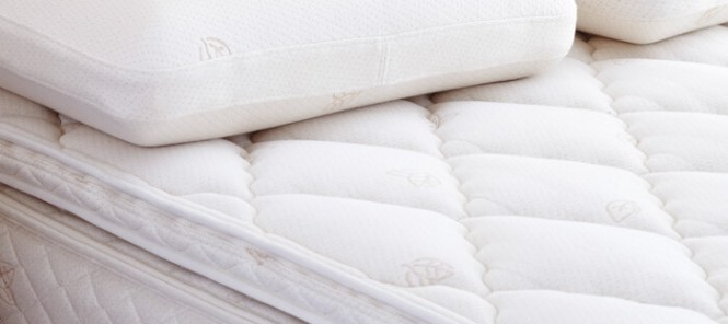 Eco Certification Ensuring Your Mattress Is Safe For The Whole Family