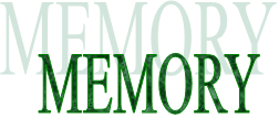 MEMORY logo for 4Ms