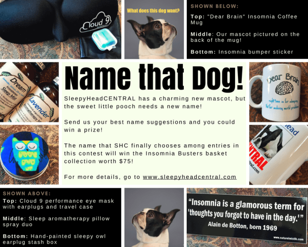 insomnia busters name that dog contest