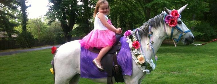 Unicorn Pony Party Rental Traveling Birthday Events Philadelphia Pa Area