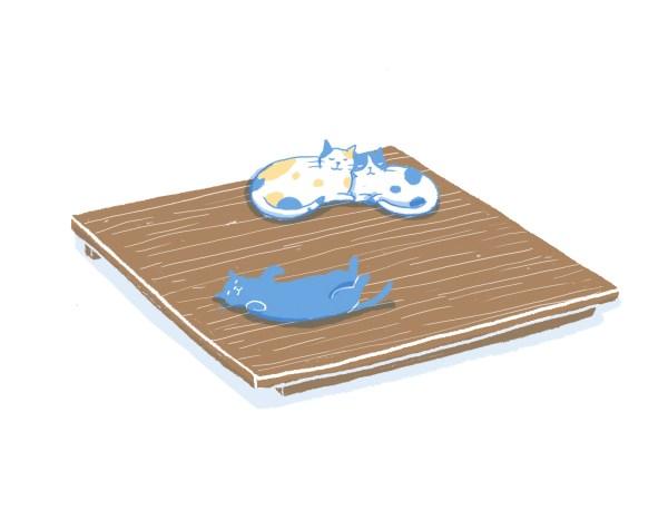 眠豆腐胡桃木床架(無床頭板)|雙人加大