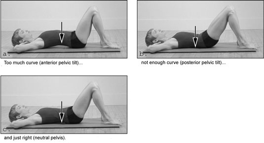 arched, tucked, and neutral pelvic positions
