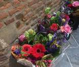 Bloemen voor de vrouwelijke hoogleraren