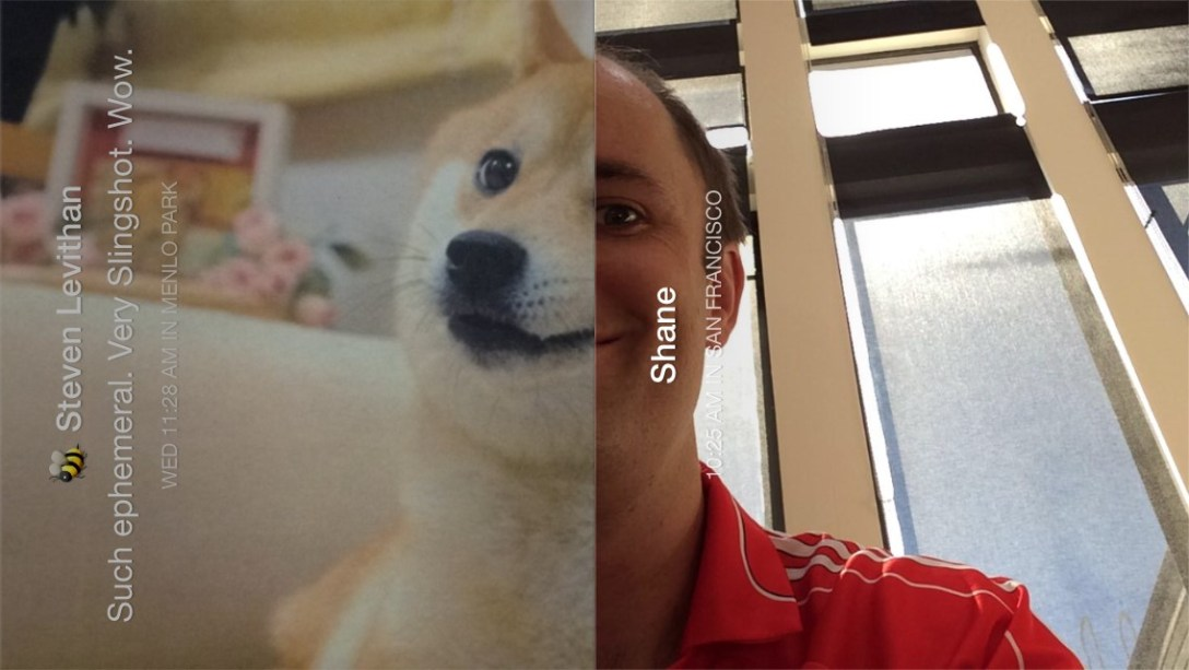 Screen capture of meme with shiba dog and Shane