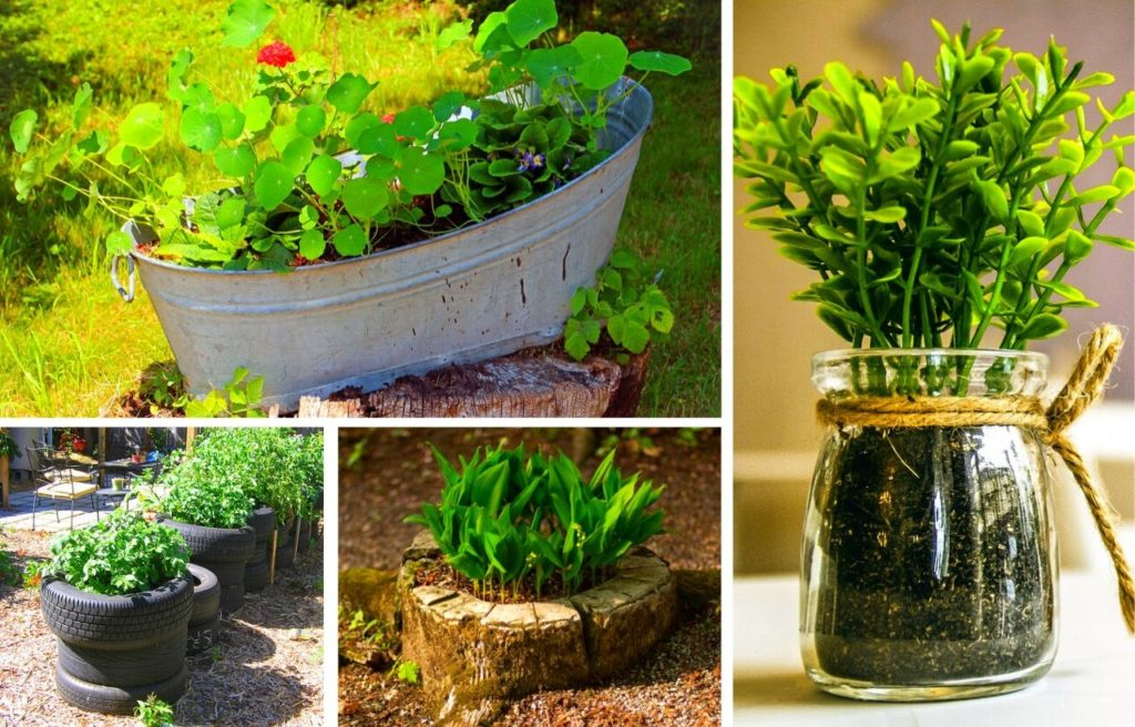 10 best diy cheap container vegetable
