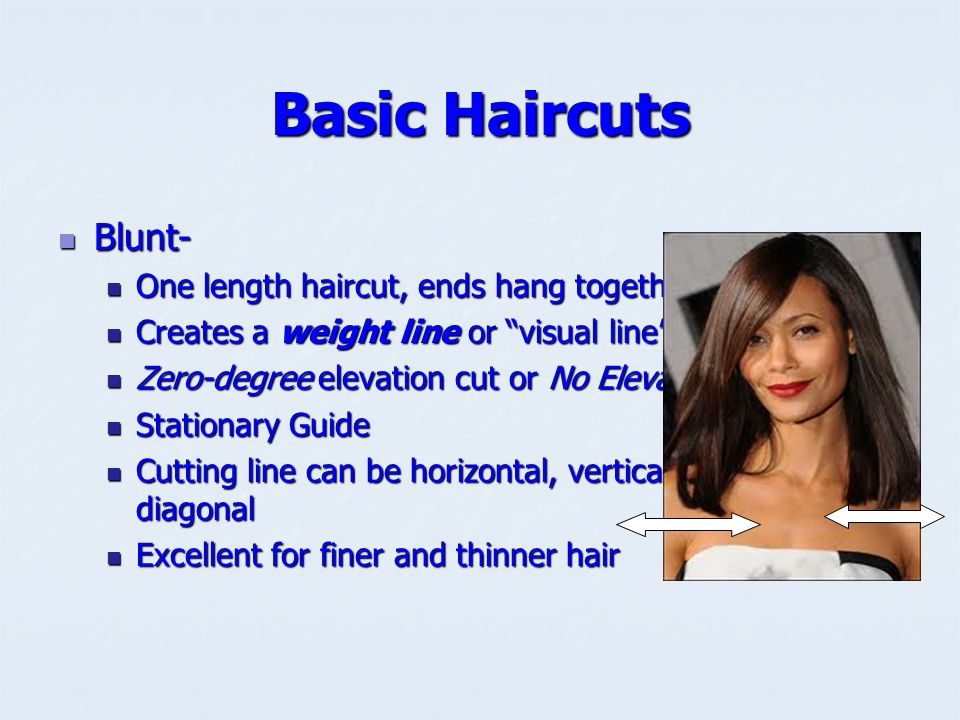 Hair Cutting Reference Points Are Used To Establish Design