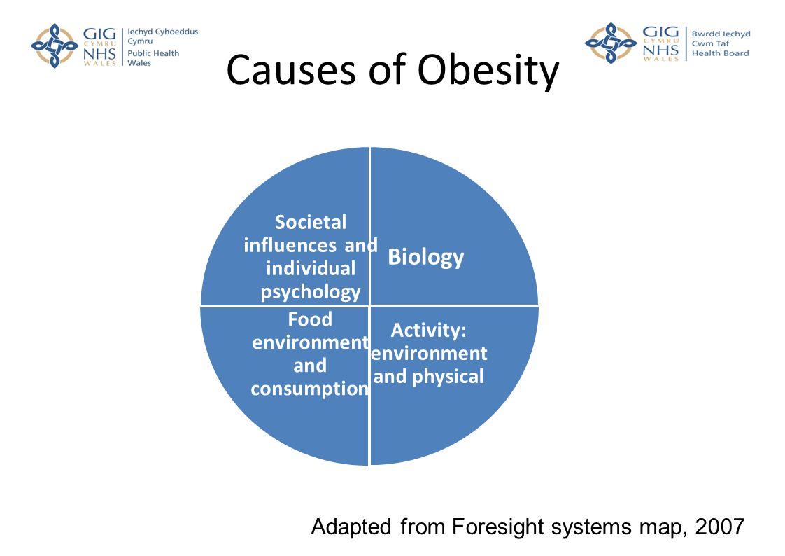 Obesity Reduction Angela Jones Consultant In Public Health