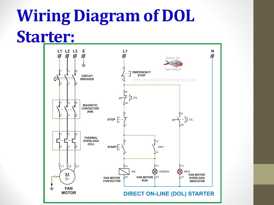 Wiring+Diagram+of+DOL+Starter%3A?resize=665%2C499 direct online starter wiring diagram the best wiring diagram 2017 dol starter wiring diagram at gsmx.co