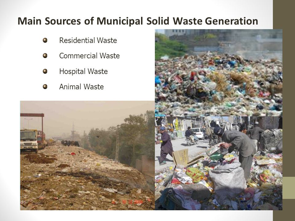 THE PROBLEMS OF MUNICIPAL SOLID WASTE AT HYDERABAD CITY