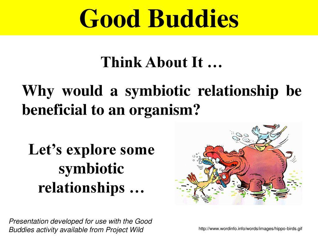 Worksheet Types Of Symbiosis Worksheet Worksheet Fun