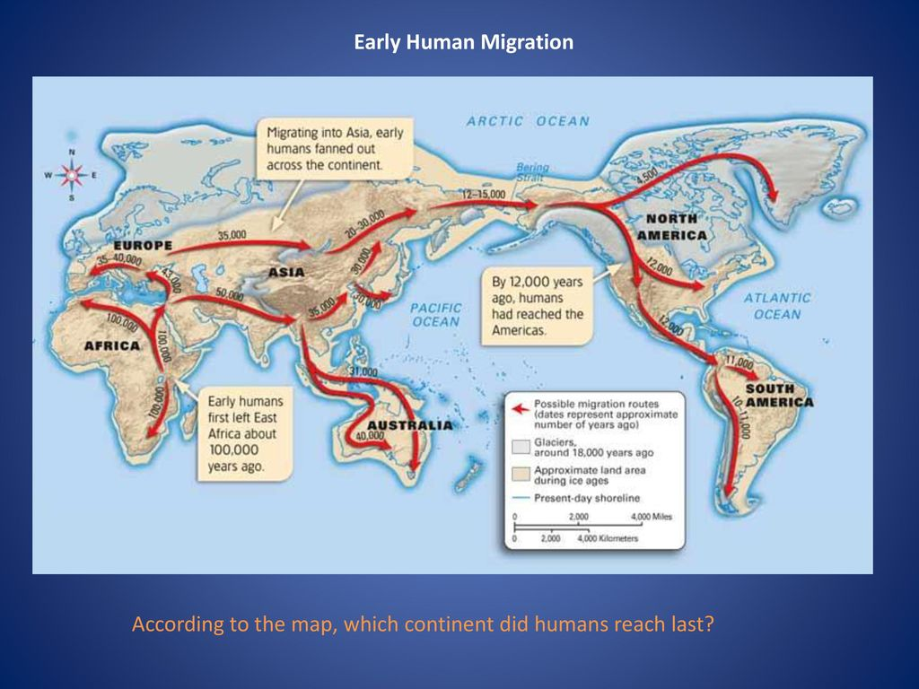 Early Human Migration Ppt Download