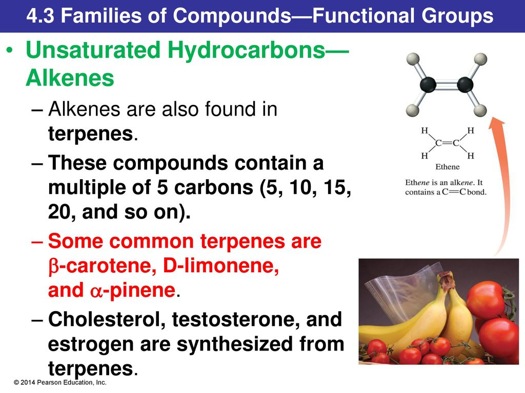 Chapter 4 Introduction To Organic Compounds