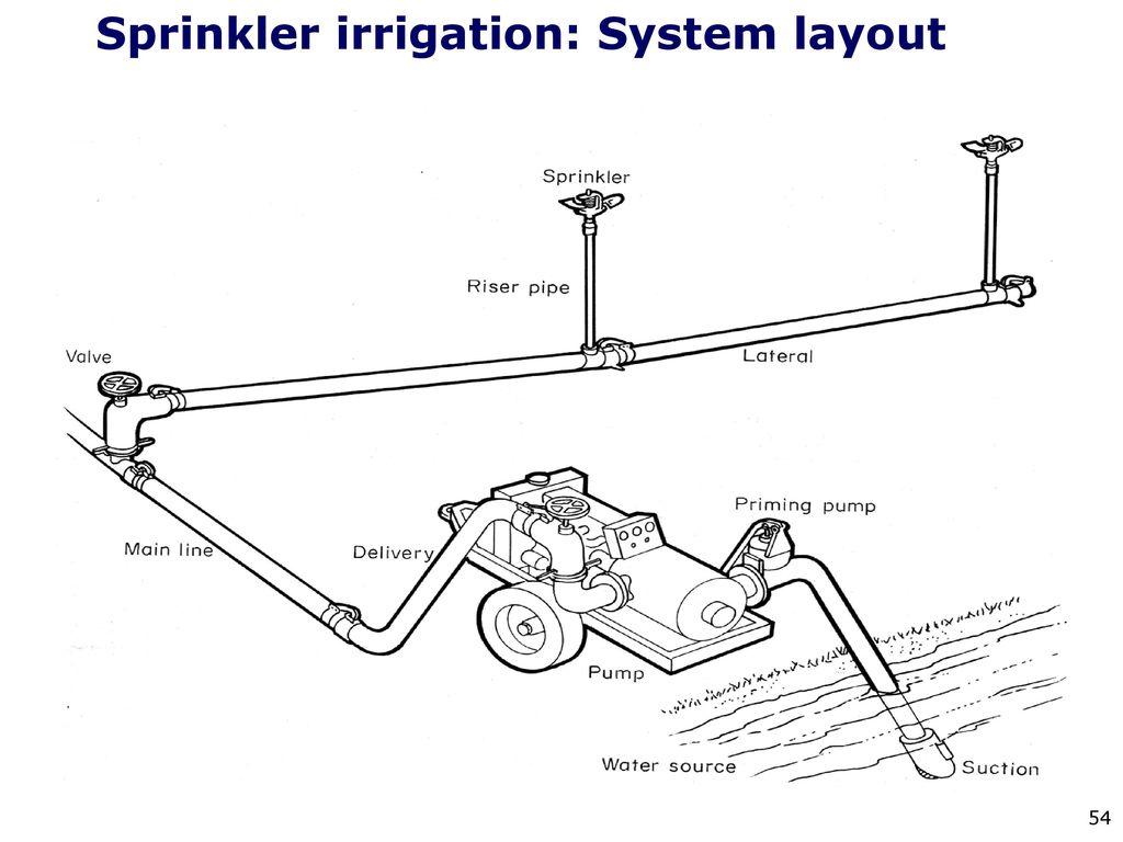 Irrigation Methods By Dr Thomas Abraham Associate Professor