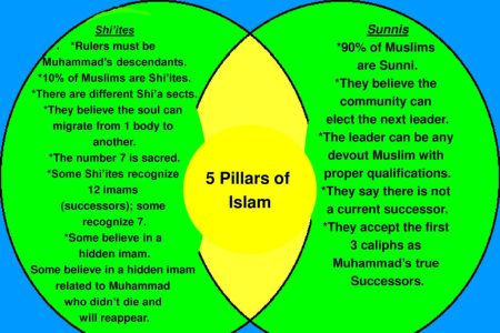 Sunni Vs Shia Differences Chart 4k Pictures 4k Pictures Full Hq