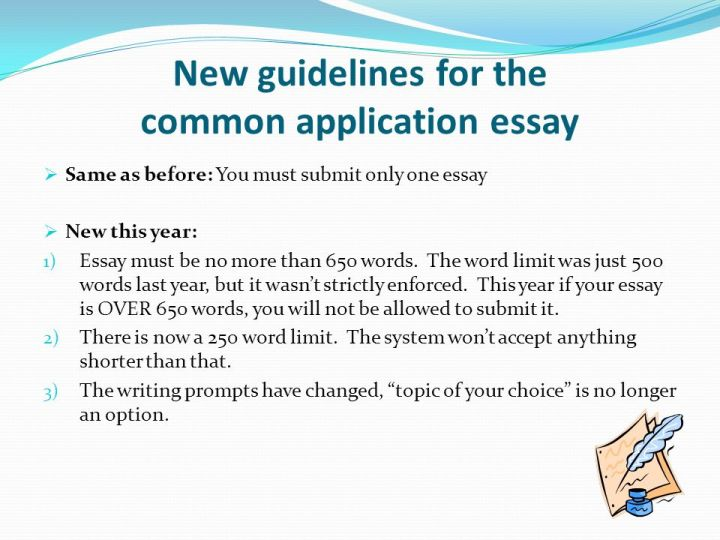 texas common application essays