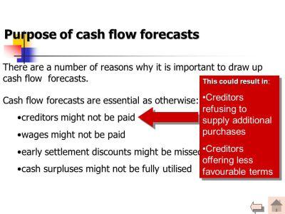 Cash Flow Forecasts. - ppt video online download