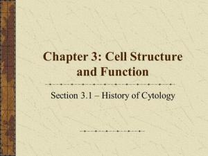 Chapter 4 Section 2 Cell Structure and Function  ppt download
