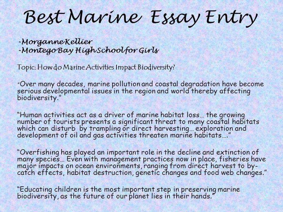 Marine Risk Environmental Environment
