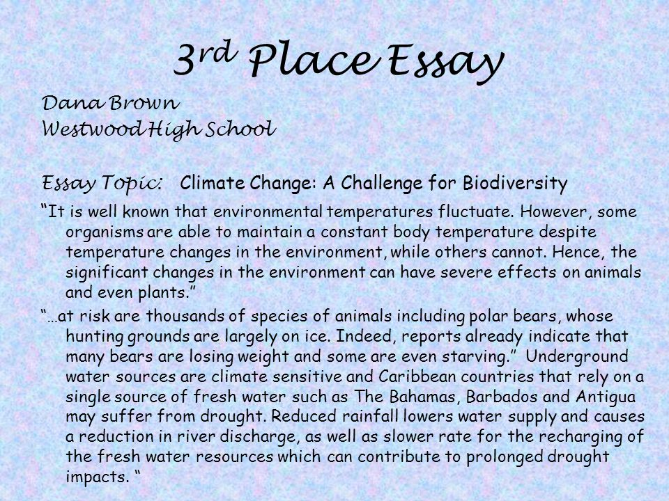 Place Profile Essay Sample  Persuasive Essay Samples For High School also Sample High School Essay  High School Senior Essay