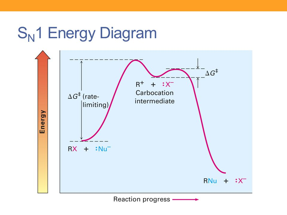 Labeled Potential Energy Diagram For Exothermic Reaction