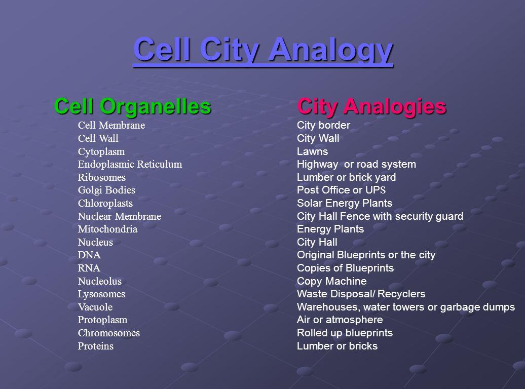 Cytoplasmogy City