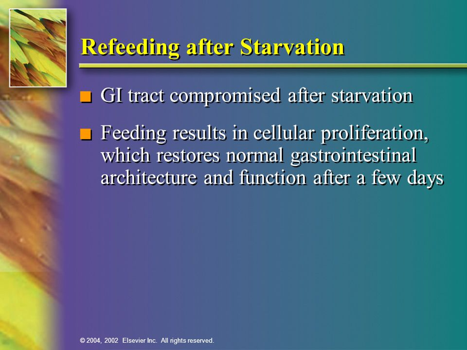 After Starvation And