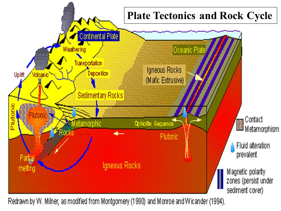 In The Lithosphere Plate Tectonics Diagram