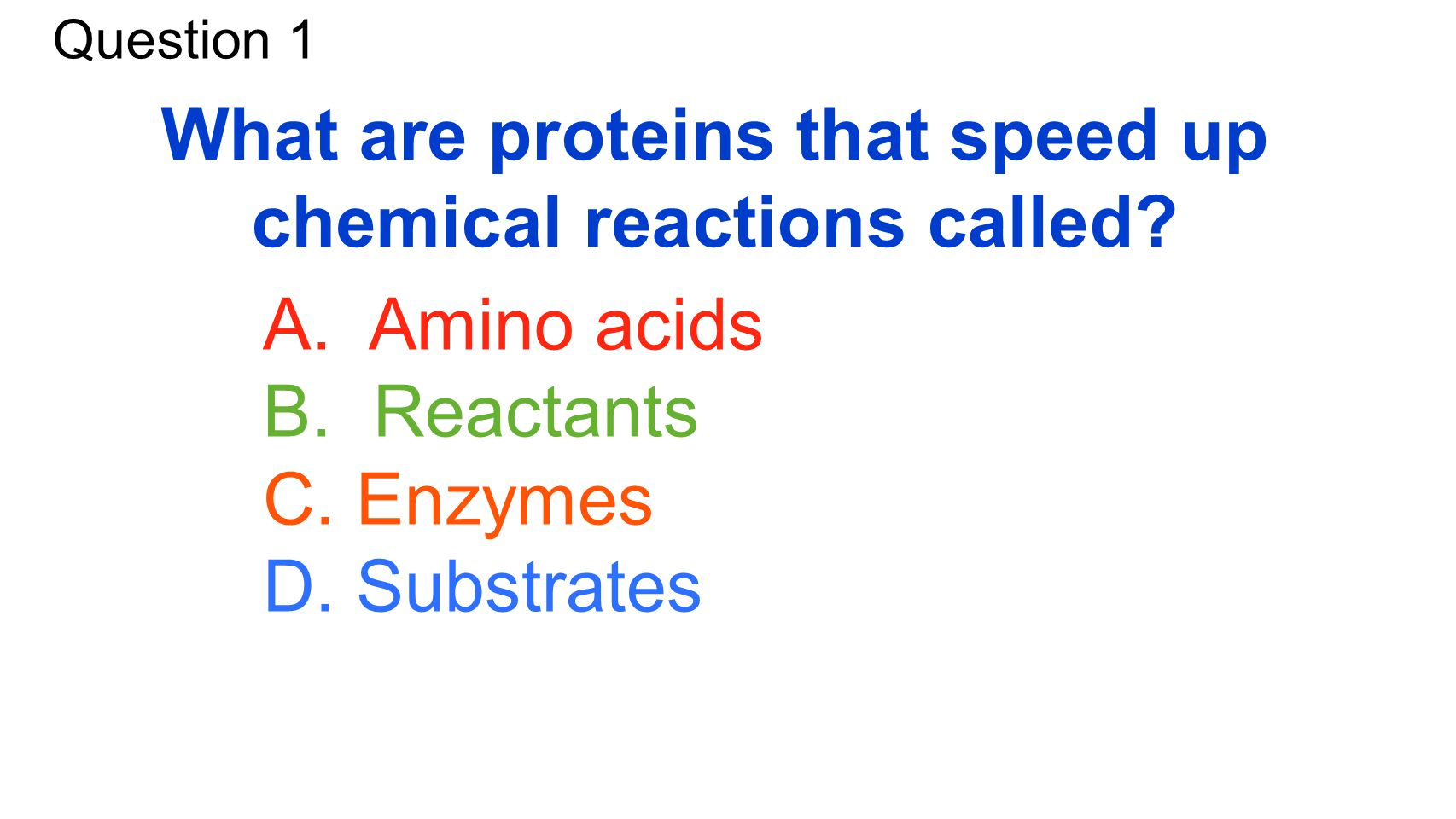 Warm Up What Are The Four Macromolecules And Their Function