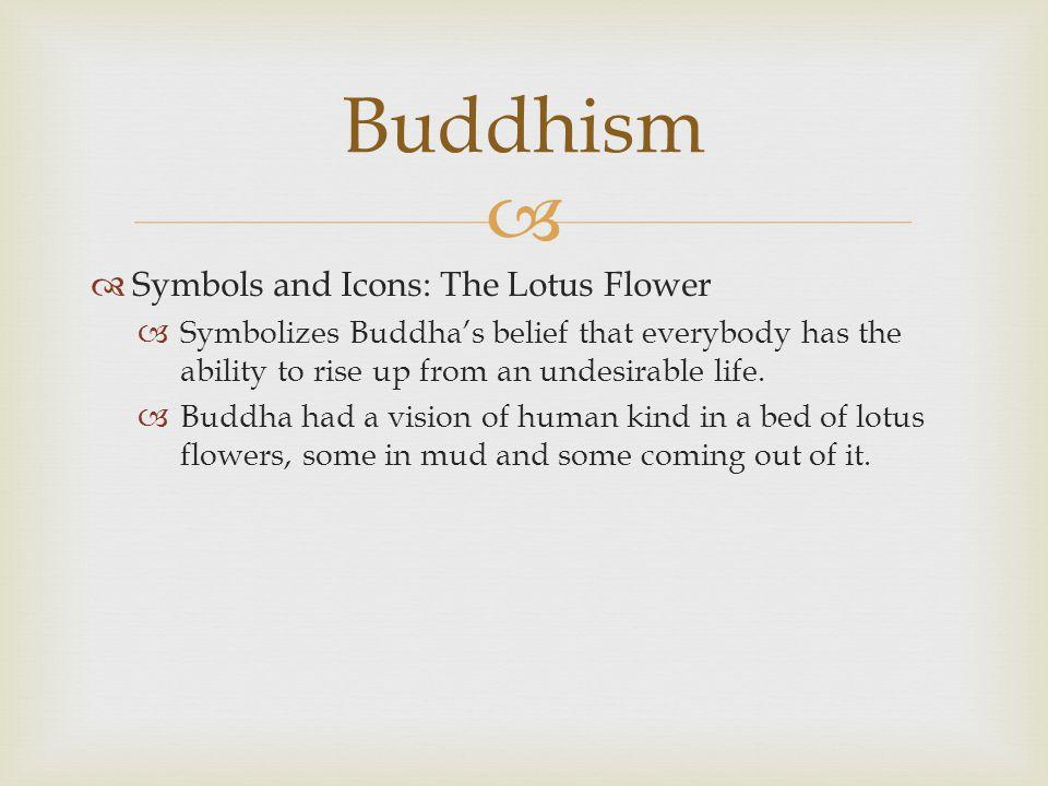 Meaning Flower Symbols Buddhist Lotus
