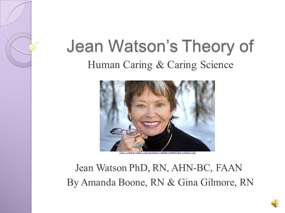 metaparadigm of nursing jean watson