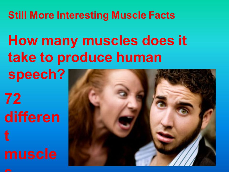 How Many Muscles Does It Take Laugh