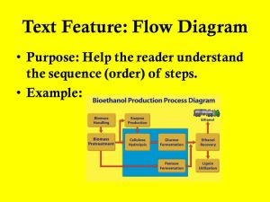 Informational Text Features  ppt video online download