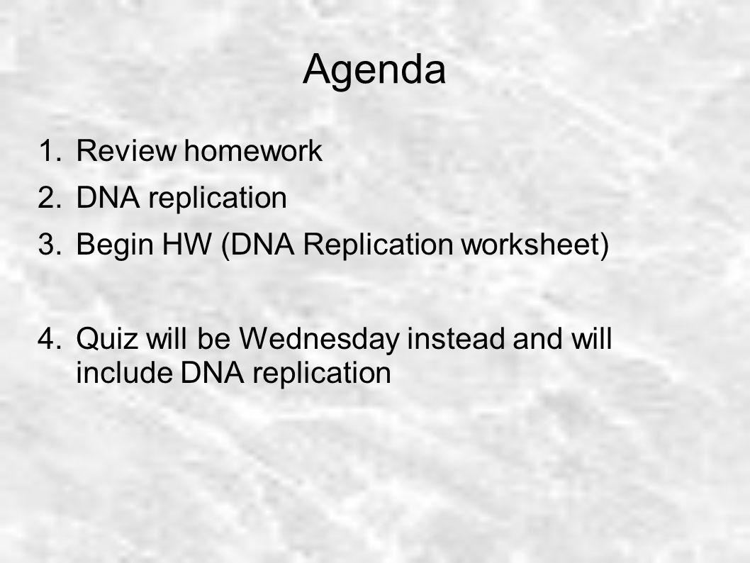 Agenda Review Homework Dna Replication