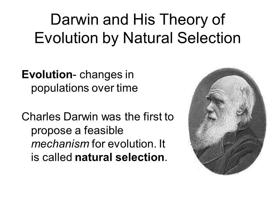 Theory Evolution Theory Evolution Natural Selection