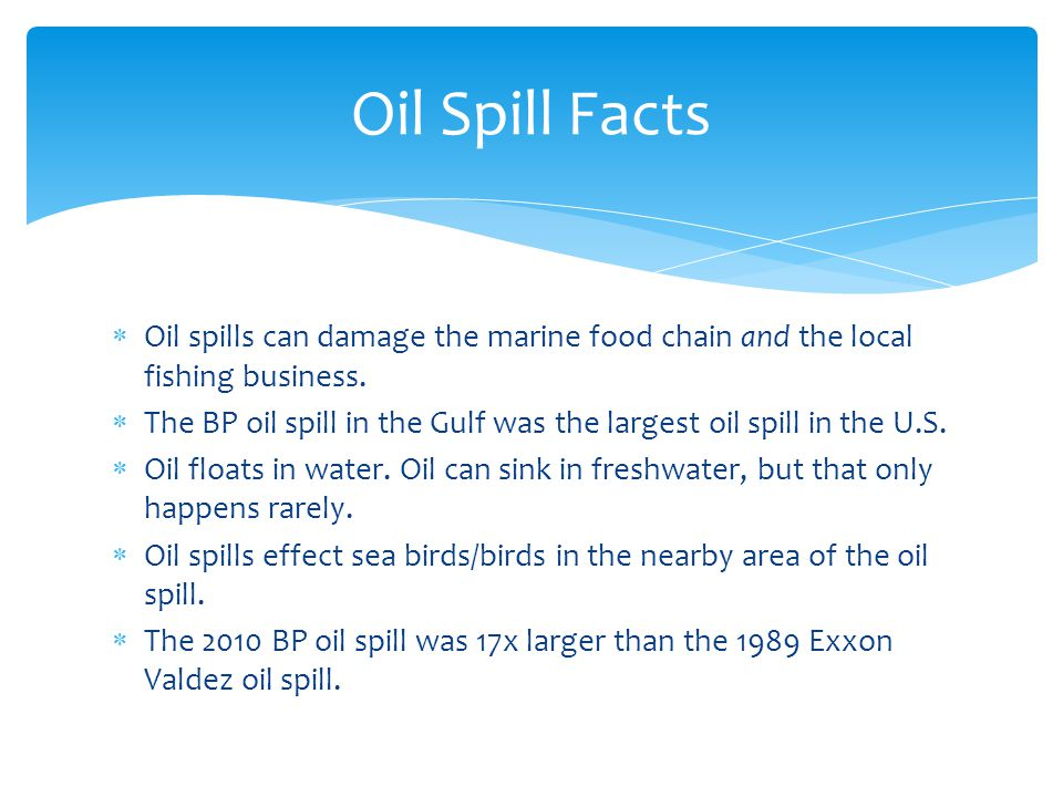Cause And Effect Of Oil Spill