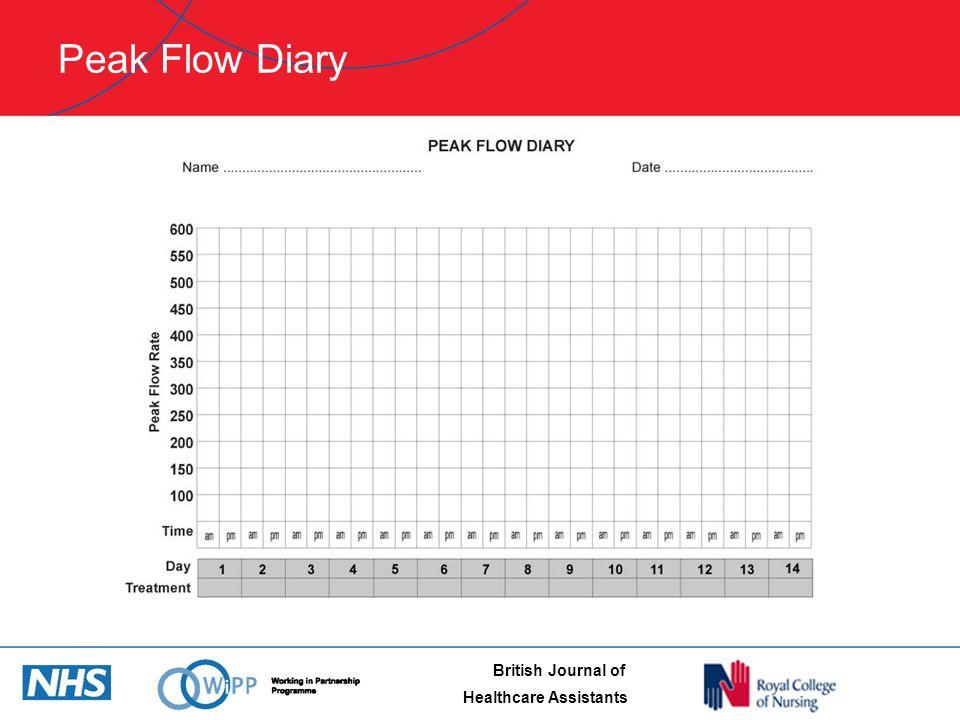 Asthma Check Peak Flow Meter