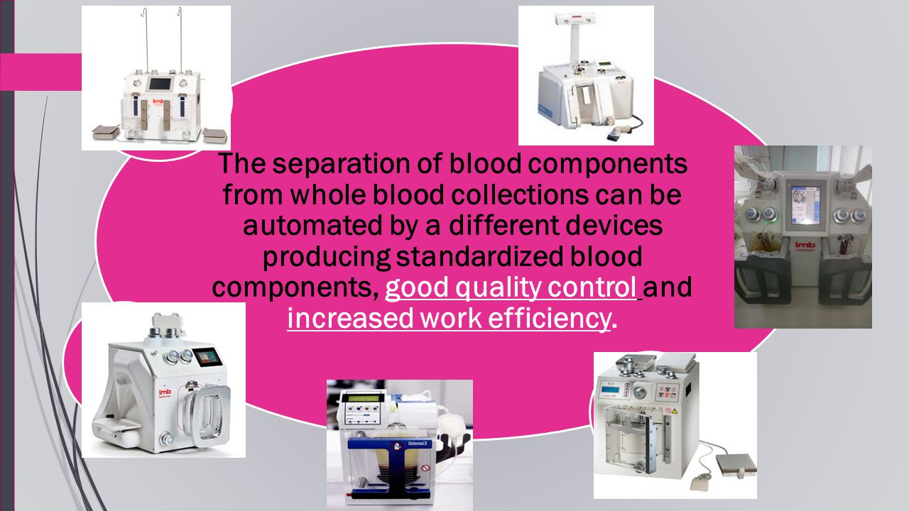 Different Components Blood