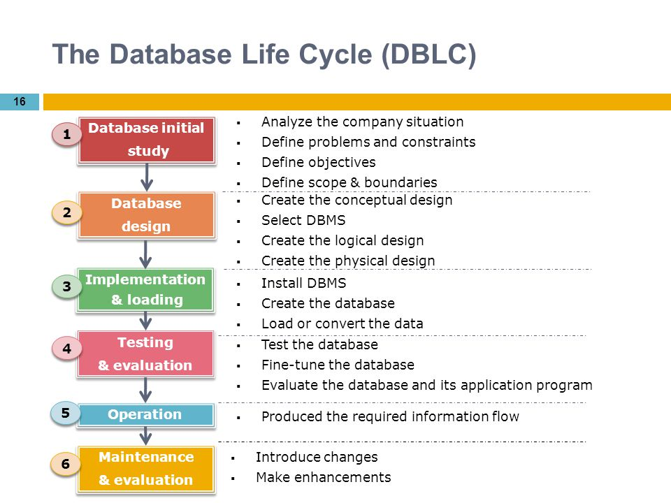 What Database Security Dbms