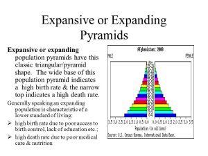 Population Pyramids  ppt download
