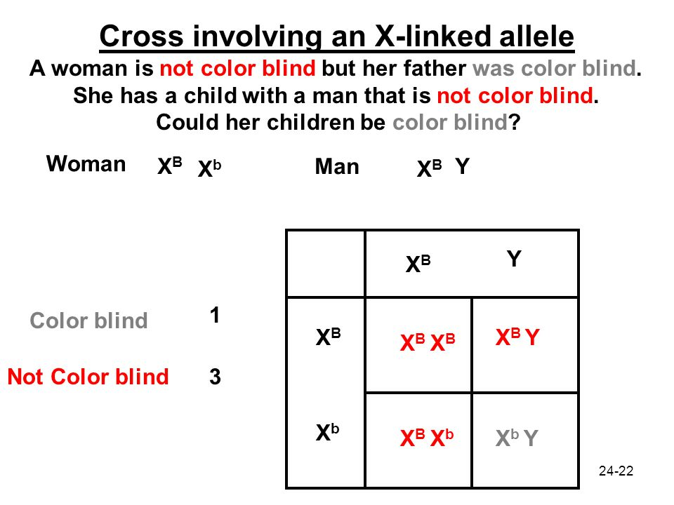 Color Blindness X Linked Recessive Pedigree Chart