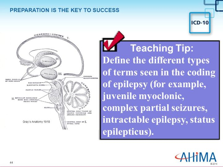 Simple Partial Motor Seizures Icd 10 | Caferacersjpg com