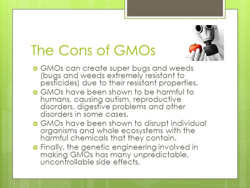 genetically modified foods pros and cons list co pros and cons of genetically modified foods best food 2017