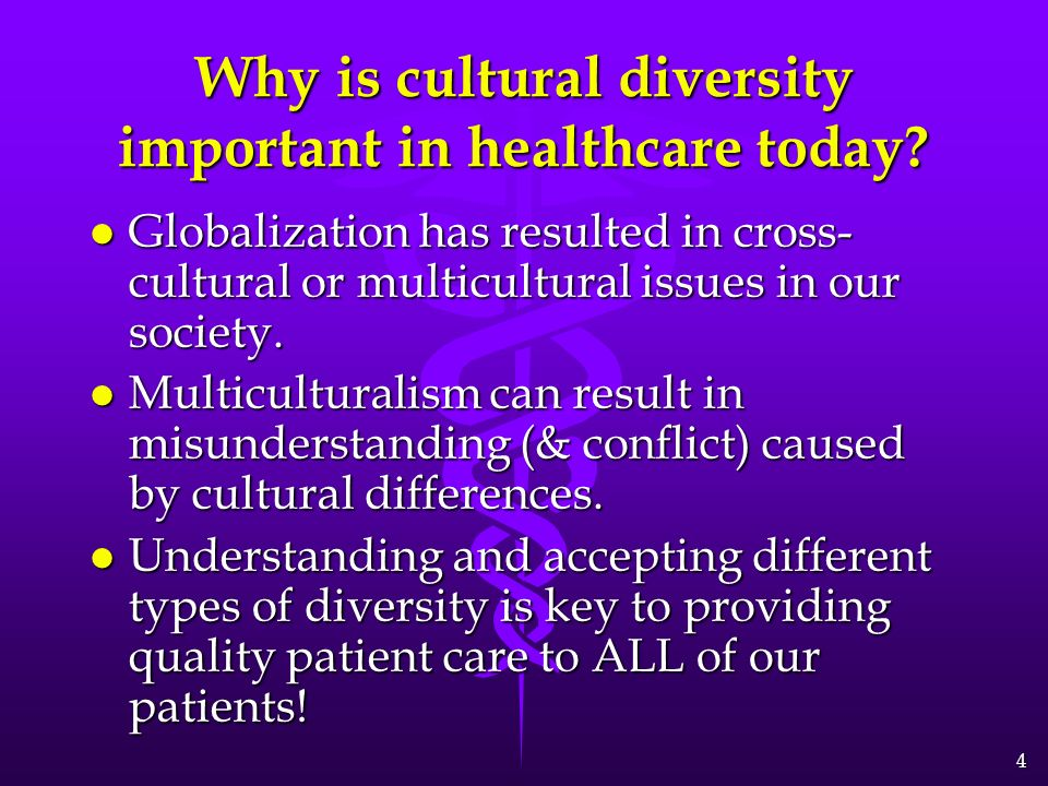 the importance of cultural diversity