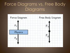C Newton's Laws & Forces AP Physics  ppt download