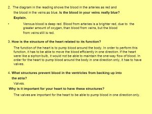 Lesson 23 Heart Parts function structure valves veins ventricle  ppt download