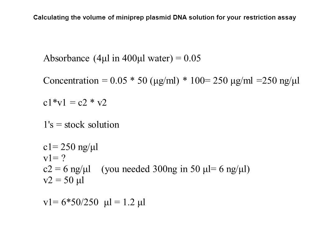 Run Restriction Digestion Ta S Will Take The Pictures For You